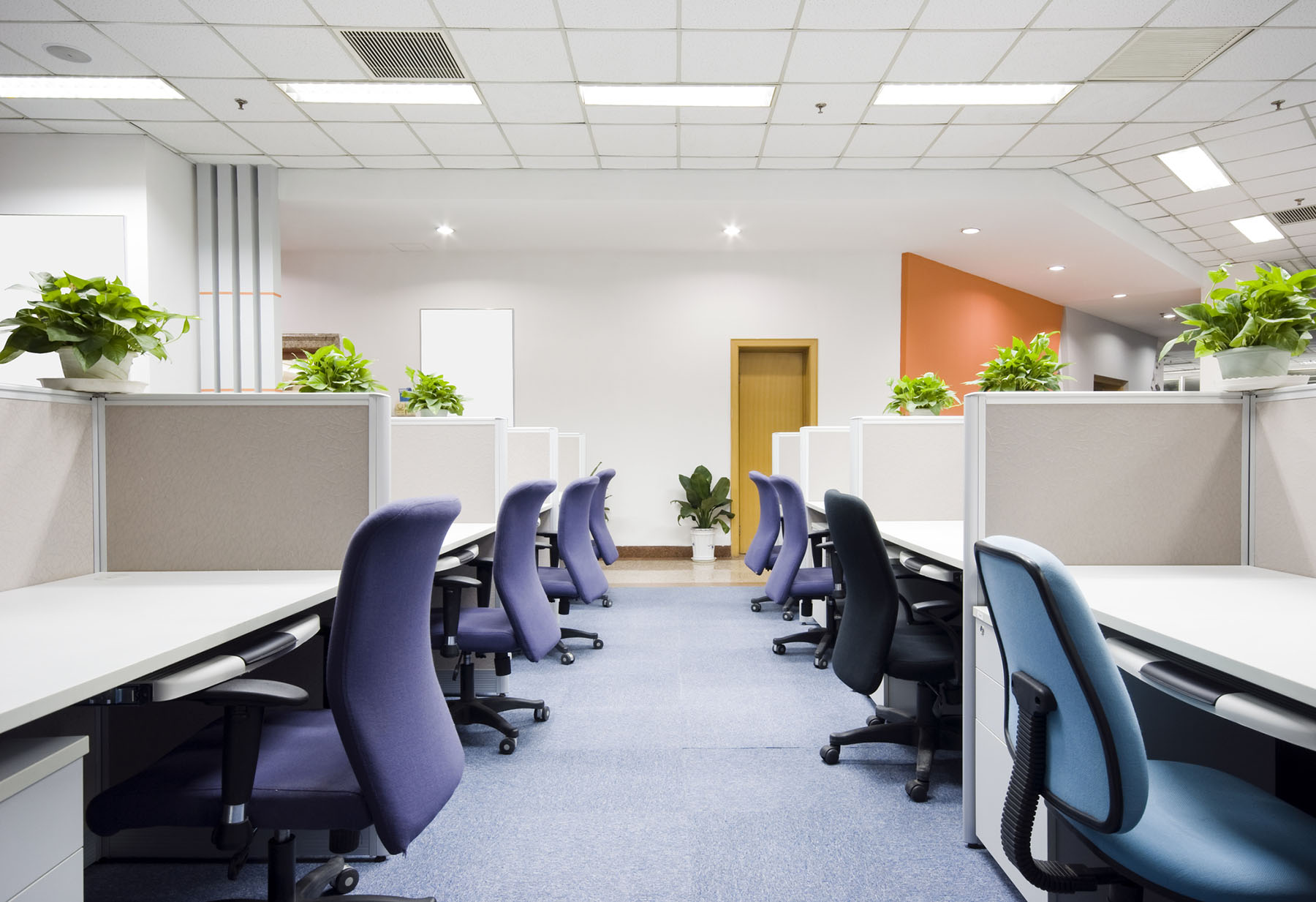 Office Flooring | Gateshead | Tyne and Wear | Northern Floorcraft